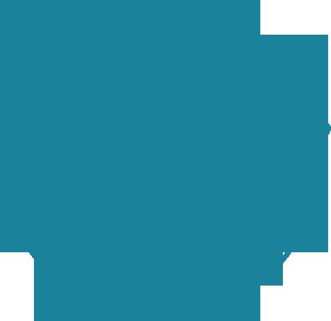 100_SATIS